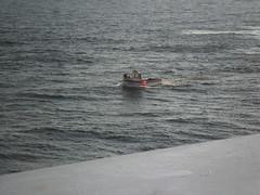 SAM_7706 (guyfogwill) Tags: guyfogwill guy fogwill france ferry brittany bretagne finistère roscoff boats plymouth armorique imo7902324 mmsi232002648 républiquefrançaise holiday summer breizh bertaèyn 29680 bertaèy 29