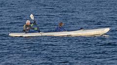 Mans best friend & Man (Franz Airiman) Tags: stockholm sweden scandinavia hund dog kayak kajak lillavärtan bay fjärd