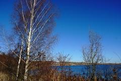 DSC04743 (bluesevenxp) Tags: geiseltalsee mücheln marina lake see ufer floating
