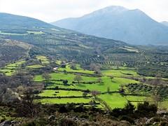 After passing a gorge comes a green, amazing dream! (Ia Löfquist) Tags: mountain berg grönska greenery landscape landskap