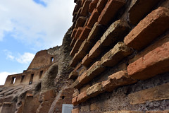 Within the Colisseum, Rome, Italy  -  (Selected by GETTY IMAGES) (DESPITE STRAIGHT LINES) Tags: nikon d7200 nikond7200 nikkor1024mm nikon1024mm getty gettyimages gettyimagesesp despitestraightlinesatgettyimages paulwilliams paulwilliamsatgettyimages rome roma romeitaly colosseum thepantheon thecolosseumrome thecolosseuminrome architecture flavianamphitheatre amphitheatre colosseo italy gladiator gladiators vespasian titus emperor