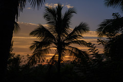 Silhouette sunrise (FlorianMilz) Tags: ratnapuradistrict srilanka lk sunrise sun early morning silhouette black orange blue sky mood tropic clouds