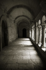 Light and Shadows (CTfoto2013) Tags: retro vintage ambiance mood atmosphere peaceful paisible monument architecture cloitre cloister abbaye abbey monastery monastere france provence paca light lumiere shadows ombre perspective colonnes columns arcades noiretblanc blackandwhite nb bn bw blancoynegro monochrome saintremydeprovence saintpauldemausole bouchesdurhone panasonic lumix gx7 building arch wall
