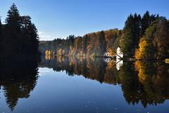 Rêve d'automne (Excalibur67) Tags: nikon d750 sigma globalvision art 24105f4dgoshsma paysage landscape reflexion reflets eaux étangs arbres trees forest foréts automne autumn