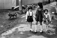 alley 635 (soyokazeojisan) Tags: japan osaka city street people dog bw blackandwhite monochrome analog olympus 100mm film trix kodak memories 1970s