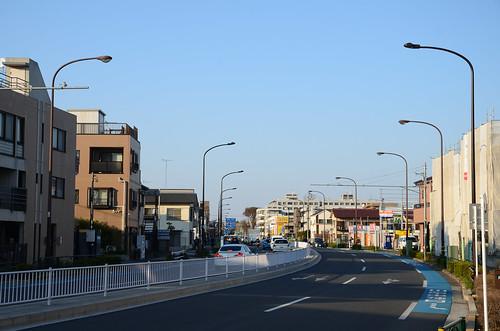 Tsurukawa-kaido in Chofu in 2018 March