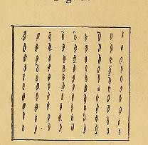 procedure image