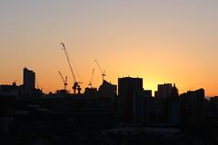 IMG_5083 (Yorkshire Pics) Tags: 1004 10042019 10thapril 10thapril2019 sunrise leeds leedsskyline leedssunrise silhouettes leedsunderconstruction underconstruction urban urbanlandscape urbanskyline urbansilhouettes crane cranes towercranes cranescape craneporn cranelovers construction leedstownhall townhall