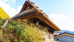 DSC01347 (Neo 's snapshots of life) Tags: japan 日本 京都 kyoto amanohashidate 天橋立 あまのはしだて sony a73 a7m3 24105 伊根