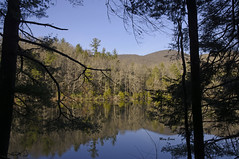 Lake Winfield Scott Reflections (mevans4272) Tags: lake reflections trees sky mountains