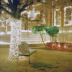 Park Bench (musubk) Tags: park bench christmas lights logan county paris arkansas courthouse film analog medium format mamiya c220f c220 cseries