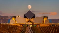 Bodega Sommos (www.jorgelazaro.es) Tags: tinto sommos bodega landscape barbastro somontano llena paisaje lunallena jorgelázaro vino naturaleza blanco sunset luna glarima atardecer provinciadehuesca españa es