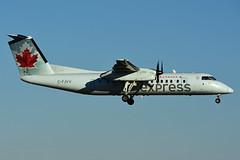 C-FJVV (Air Canada express - JAZZ) (Steelhead 2010) Tags: aircanada aircanadaexpress jazz yhm creg cgjvv dehavillandcanada dhc8 dhc8300 dash8