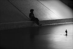F_MG_3119-BW-2-Canon 6DII-Tamron 28-300mm-May Lee 廖藹淳 (May-margy) Tags: theestaçãodooriente maymargy bw 黑白 人像 鴿子 剪影 逆光 通道 心情的故事 幾何構圖 點人 台灣攝影師 街拍 線條造型與光影 天馬行空鏡頭的異想世界 心象意象與影像 東方火車站 里斯本 葡萄牙 fmg3119bw2 portrait wingsandfeather 羽翼 pigeon corridor silhouette backlighting streetviewphotography humaningeometry humanelement taiwanphotographer trainstation lisbon portugal canon6dii tamron28300mm maylee廖藹淳 mylensandmyimagination linesformandlightandshadow naturalcoincidencethrumylens