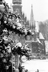 Ozdoby / Ornaments (Rrrodrigo) Tags: blackandwhite fp4party ei400iso vivitar10035mcmacro ilfordfp4 film pentaxme kraków city winter snow christmas tree