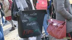 Schulstreik_Konstanz_2019007