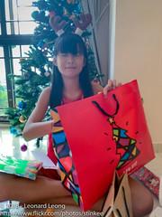 This isn't mine? (Stinkee Beek) Tags: erin christmas