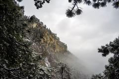 0057_GOPR4830 (marcellszmandray) Tags: ausztria hohewand gutensteinialpok alpok viaferrata kirándulás tavasz hó gebirgsvereinsteig