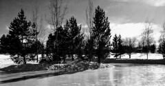 Pond Skating Shadows (Mr. Happy Face - Peace :)) Tags: bw pond rink shadows art sky clouds