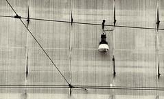 bianco (Rino Alessandrini) Tags: architecture electriclamp wallbuildingfeature nopeople modern backgrounds blackandwhite urbanscene builtstructure lightingequipment constructionindustry window domesticroom indoors ceiling pattern flooring buildingexterior equipment technology everypixel