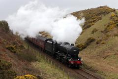 48151 1Z87 'The Cumbrian Coast Express' (Cumberland Patriot) Tags: lms london midland scottish railway br british rail stanier 8f 280 48151 steam locomotive engine 1z87 the cumbrian coast express charter passenger train railroad nethertown cutting