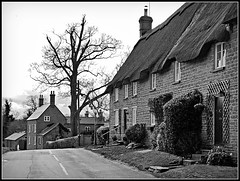 Ashby St Ledgers (Jason 87030) Tags: farm house cottages village ashbystledgers northants northamptonshire bw bbw black white blackwhite noir blanc frame border scene uk cooperative caring sharing dairy old view england tones tree trunk naked bare branches countryside pleasant nice unitedkingdom main street road lane british britain great thatch roof windows