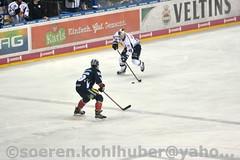 DSC_7406 (Sören Kohlhuber) Tags: eisbärenberlin dynamo eishockey red bull münchen del playoff