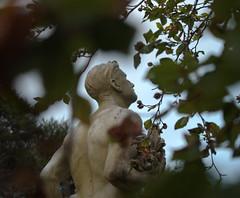 (kattabrained) Tags: statue tree autumn boltonstcemetary
