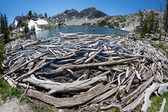Fisheye view of Sawtooth Lake in Idaho with lots of logs and driftwood in foreground (m01229) Tags: sunny color pine peaceful nature water day beauty snow trees summer tree peak serenebackground outdoors america horizontal stanley sky sawtoothnationalforest tranquil mountains landscape sunrise sawtoothmountains american idaho sawtooths reflections sawtooth landscapes salmonchallisnationalforest scenic alpinelake us daytime blue stanleylake northamerica adventure travel forest reflection clouds outdoor green usa logs wilderness mountain