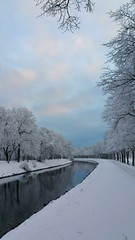 ❄️ White Magic! (Foggy Winter Morning) ☺ (crush777roxx) Tags: crush777roxx crush 20181217 2018 december 17th happy new year 2019 phone camera samsung galaxy note 4 stockholm sweden winter snow fog frost canal trees horses snowing frosted blue sky nature landscape natur landskap paysage bonne année feliz año nuevo سنه جديده سعيده 性质 景观 新年快乐 自然 風景 明けましておめでとうございます 31821198 share kindness sharethekindness snowfrosted frostedtrees foggywinter happynewyear bluesky snickerdoodle😊🌻 frostythesnowman christmasmusic природа пейзаж красота зима новый год stockholmsweden phonecamera galaxynote4 ☺happynewyear☺ winterscape happynewyear2019 winterbeauty