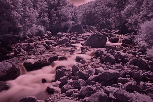 Bealey river IR