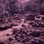 Bealey river IR thumbnail