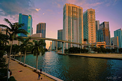 The city and the fall of the afternoon. (Aglez the city guy ☺) Tags: miamifl downtownmiami miamiriver urbanexploration walkingaround waterways walking architecture afternoon coconuttree cityscapes outdoors water bridge brickell