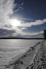 (BS-Foto) Tags: bsfoto eis schnee snow neige samsungnx200 nx200 samsungnx20mm28 weis white blanc winter hiver 20mm 20mmf28 samsungnx20mmf28 20mmorless samsung nx apsc backlight f22