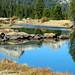 TuolumneRiver  Reflections, Yosemite 10-18