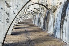Arcos (josé vargas.) Tags: españa andalucía málaga costadelsol puertos puertodemálaga airelibre arquitectura ciudad city street nikon nikond500 ciudadyarquitectura