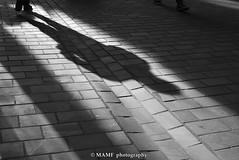 Shadow 1 (Please follow my work.) Tags: art arty artistic blackandwhite blackwhite bw biancoenero brilliantphoto brilliant briggate blanco blancoynegro blancoenero candid city citycentre dark d7100 england enblancoynegro ennoiretblanc excellentphoto flickrcom flickr google googleimages gb greatbritain greatphotographers gardenbird inbiancoenero interesting leeds ls1 leedscitycentre mamfphotography mamf monochrome nikon nikond7100 northernengland noiretblanc noir north onthestreet photography pretoebranco photograph person quality qualityphotograph road reflection schwarzundweis schwarz shadow shadows town bicycle uk unitedkingdom upnorth urban westyorkshire excellent yorkshire zwartenwit zwartwit zwart albionstreetleeds