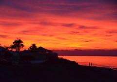 Marbella Sunrise Christmas Day 2018. Nikon D3100. DSC_0541 (Robert.Pittman) Tags: nikond3100 d3100 sigma18300mmf3563dcoslens iamnikon outdoor sunrise sea sky trees beach silhouettes landscape marbella malaga spain europe