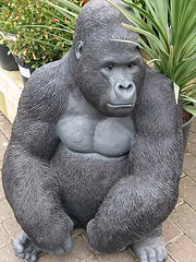 Notcutts Garden Centre - Gorilla (ell brown) Tags: monkspath shirley solihull westmidlands england unitedkingdom greatbritain stratfordrd stratfordrdshirley notcutts notcuttsgardencentreandrestaurant notcuttssolihull solihullnotcuttsgardencentre mobile mobileshots sony sonyxperiaxz3 gorilla