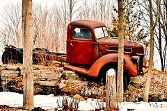 """""""They say I'm old-fashioned, and live in the past, but sometimes I think progress progresses too fast!"""" ― (SusanW<images>) Tags: march21 woodsy countryside scenery longdrives travel getoutdoors ruralroads rural spring trees woods rusty old classic truck vintage"""