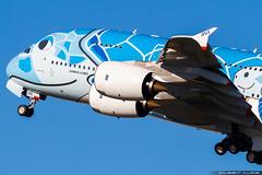All Nippon Airways ANA Airbus A380-841 cn 262 JA381A (Clément Alloing - CAphotography) Tags: all nippon airways ana airbus a380841 cn 262 ja381a toulouse airport aeroport airplane aircraft flight test canon 100400 spotting tls lfbo aeropuerto blagnac aeroplane engine sky ground take off landing 1d mark iv avgeek avgeeks planespotter spotter