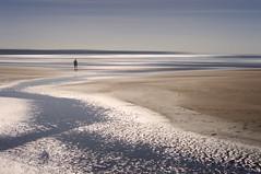 Shine Bright (Bruus UK) Tags: diamonds atlantic mawganporth cornwall shimmer shimmering alone beach sand cornwallliving beachlife ripples shore coast marine seascape minimal minimalseascape shining livingcornwall outdoorphotography landscapephotography