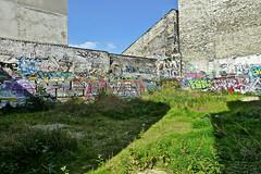 PARIS - PASSAGE DRIANCOURT (mimi.deparis21) Tags: paris passage abandon bâtiments murs tags sauvage herbes ombres friche nomansland walls streetart sky shadow garden wildgarden