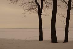 Seascape (Sergei P. Zubkov) Tags: thegulfoffinland ice snow sea