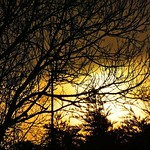 Sunrise from my window this morning thumbnail