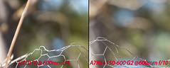 Defocus comparison (Marvves) Tags: sony rx10 iv a7rii 42mp tamron g2 150600mm iii a7 a7r ii sigma contemporary sports