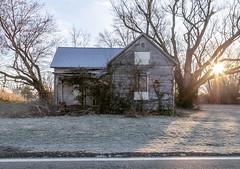 Abandoned House — Good Hope, Ohio (Pythaglio) Tags: house dwelling residence greenfield ohio unitedstatesofamerica us abandoned historic onestory balloonframe woodsiding gabledell porch 11windows trees overgrown goodhope waynetownship fayettecounty