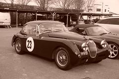 Jaguar XK150 1958, HRDC Track Day, Goodwood Motor Circuit (2) (f1jherbert) Tags: sonya68 sonyalpha68 alpha68 sony alpha 68 a68 sonyilca68 sony68 sonyilca ilca68 ilca sonyslt68 sonyslt slt68 slt sonyalpha68ilca sonyilcaa68 goodwoodwestsussex goodwoodmotorcircuit westsussex goodwoodwestsussexengland hrdctrackdaygoodwoodmotorcircuit historicalracingdriversclubtrackdaygoodwoodmotorcircuit historicalracingdriversclubgoodwood historicalracingdriversclub hrdctrackday hrdcgoodwood hrdcgoodwoodmotorcircuit hrdc historical racing drivers club goodwood motor circuit west sussex brown white sepia bw brownandwhite