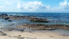 Little Corona del Mar Beach (sftrajan) Tags: tidepools tides rocks littlecoronadelmarbeach orangecounty california reef waves ocean newportbeach