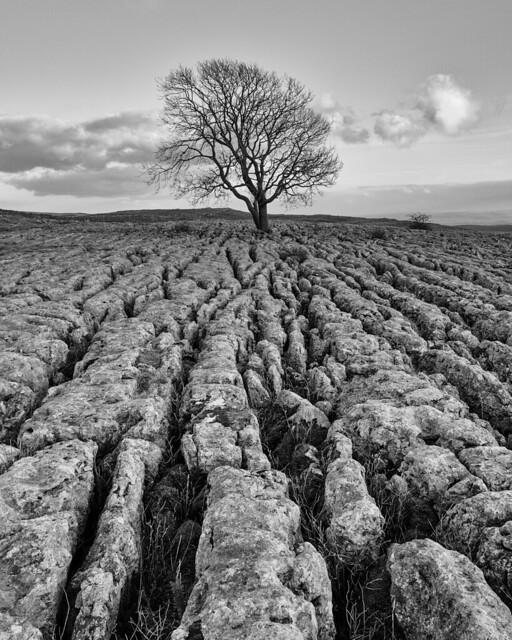 190409 Limestone Pavement - Malham